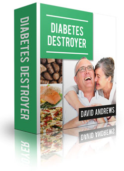 Type 2 Diabetes Destroyer Review