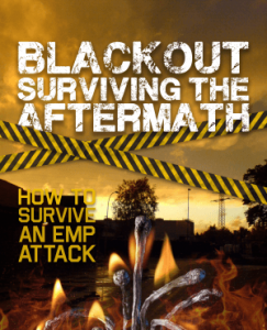 BLACKOUT: Surviving The Aftermath Review - Is It True?