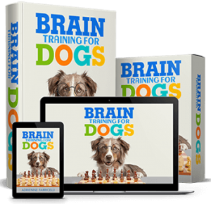 Adrienne Farricelli's Brain Training For Dogs