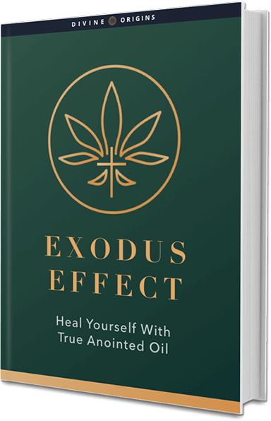 The Exodus Effect System