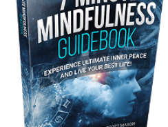 Greg Thurston's 7 Minute Mindfulness Review
