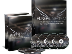 The Flight System Review
