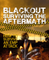 BLACKOUT: Surviving The Aftermath Review