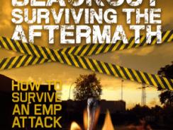 BLACKOUT: Surviving The Aftermath Review