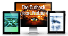 Bill Campbell's Outback Vision Protocol Review
